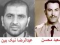 az tehran ta tirana-Hanifnejad-Saeed Mohsen-Nikbin-Badizadegan.jpg
